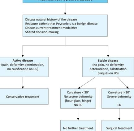 The Impact Of Thyroid Disease On Sexual Dysfunction In Men And